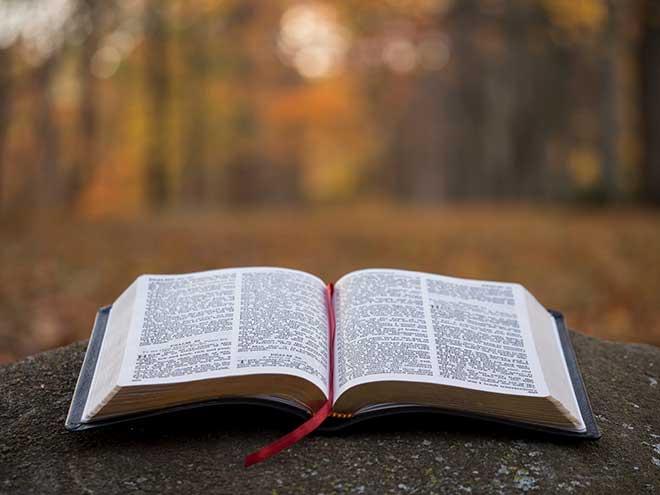 Библия 15 глава